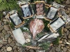 いつでも刺身+鮮魚一夜干しセット  送料・税込み価格です