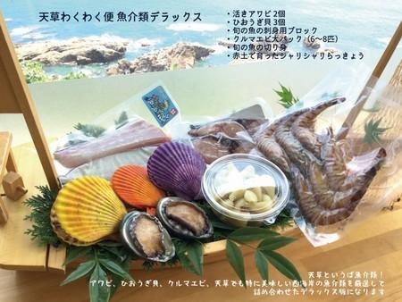 天草わくわく魚貝類デラックスセット(送料・税込み)