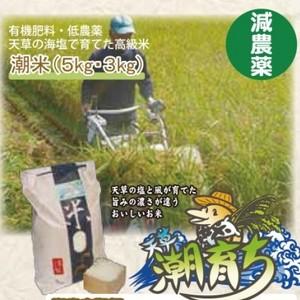 海水で育てた潮育ち米(送料+消費税は別途)