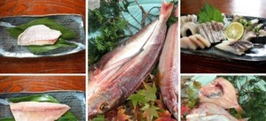 いつでも刺身+ホクホク鮮魚一夜干し 価格は送料込みです