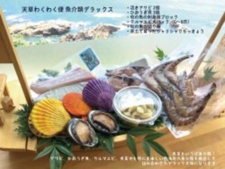 魚貝類デラックスミニ - 上記の製品からアワビ抜きです(送料・税込み)